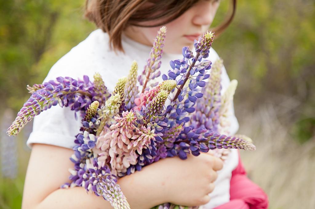 Lupin-bouquet-Mia